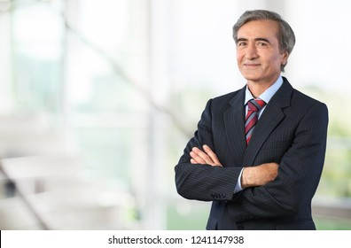 Senior business man in grey suit on light background