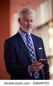 senior business man talk on mobile phone  at modern bright office interior
