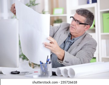 senior businessman in the office studying Plan