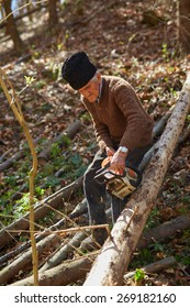 Senior caucasian man woodcutter cutting down trees with chainsaw