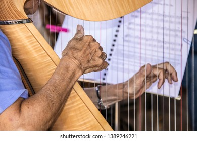 Senior citizen aged woman playing the harp with one wrinkled hand in clear focus and other hand and music blurred in background - close-up