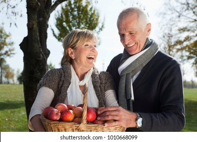 Senior couple with basket of apples