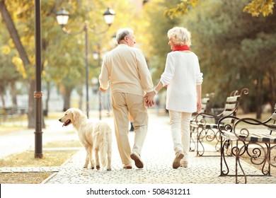 Senior couple and big dog walking in park