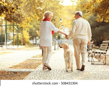 Senior couple and big dog walking in park