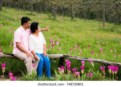 Senior couple chat happily in the field.