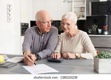 Senior couple discussing investment, checking their bills at home