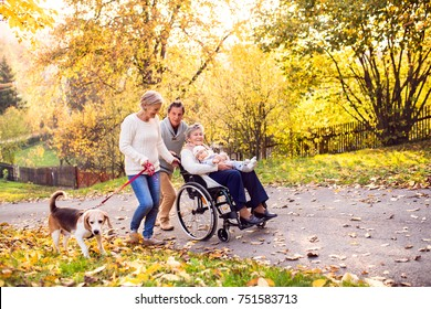 Senior couple with a dog and elderly woman in wheelchair holding a baby. An extended family on a walk in autumn nature.