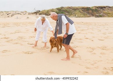 senior couple with dogs at sea