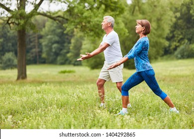 Senior couple doing a Chi Gong exercise in a wellness class in nature