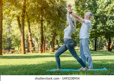 Senior couple doing yoga in the park. Health concept