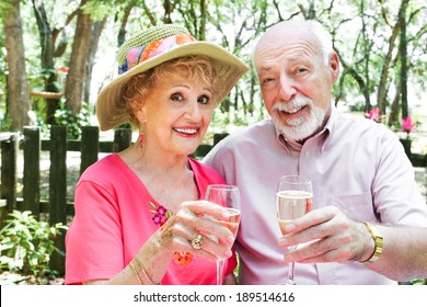 Senior couple drinking champagne together outdoors in a picnic setting.