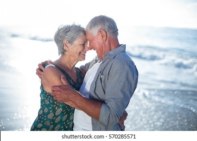 Senior couple embracing at the beach on a sunny day