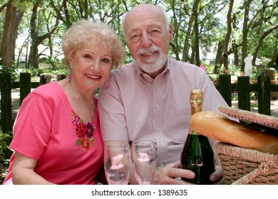 A senior couple enjoying a picnic in the park.