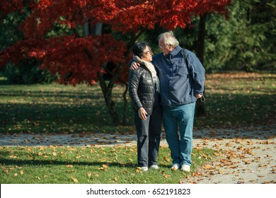 Senior couple enjoying time at the park at the sunset. Concerpt Family