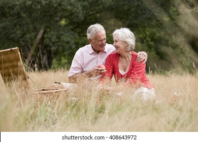 A senior couple having a picnic