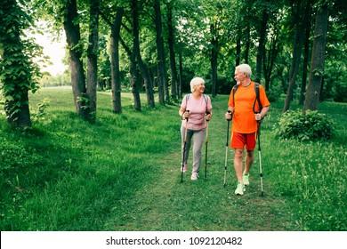 Senior couple hiking below trees in woods.