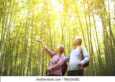 Senior Couple hiking in green bamboo forest