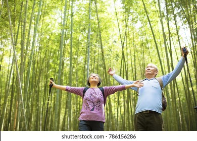 Senior Couple hiking and relaxing in green bamboo forest