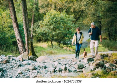 Senior couple are hiking through the Lake District together with their pet dog.