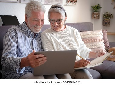 A senior couple looks at the laptop with interest and makes a note in a notebook. Plan a trip. White hair. New technology for older people