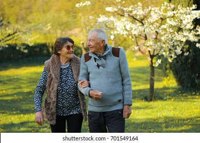 Senior couple in love walking hand in hand in the park front view. Concept of active elderly people during retirement. Everyday joy lifestyle without age limitation.