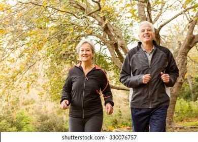 Senior couple in the park on an autumns day