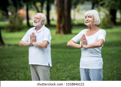 senior couple practicing meditation sukhasana standing poses with folded hands