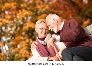 Senior couple sitting in the autumn park and resting, concept of a retirement age