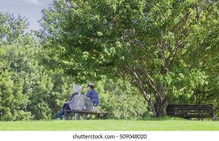 Senior couple under a tree