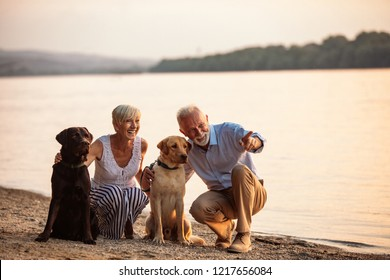 Senior couple walking with their pets by the river
