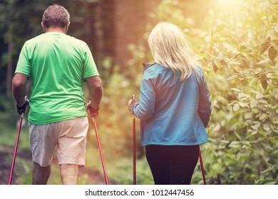 Senior couple walking together in the woods. Trekking. Active retirement.