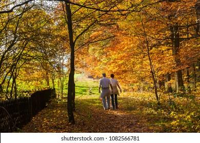 Senior couple walks through the sunny woods in autumn