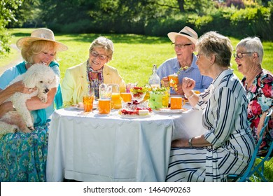 Senior family members are picnicking in park, having meal, eating cake, drinking fruit juice, enjoying a small white dog, held in arms by a blond lady.