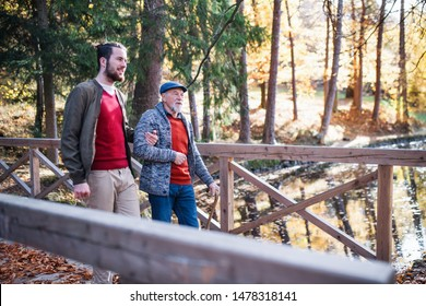 Senior father with walking stick and his son on walk in nature, talking.