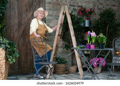 Senior female gardener working in the backyard near the garden