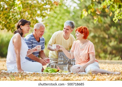 Senior friends during a picnic with fruits and coffee