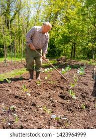 Senior gardener tilling the soil in the garden. Spring garden concept.