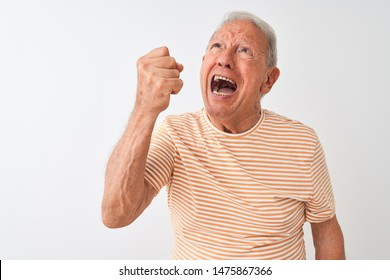 Senior grey-haired man wearing striped t-shirt standing over isolated white background angry and mad raising fist frustrated and furious while shouting with anger. Rage and aggressive concept.