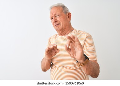 Senior grey-haired man wearing striped t-shirt standing over isolated white background disgusted expression, displeased and fearful doing disgust face because aversion reaction. With hands raised