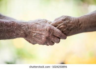 Senior Hands Holding