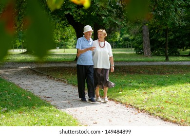 Senior happy couple walking in the park