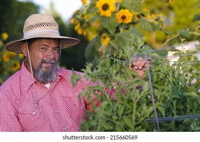 Senior hispanic male gardener