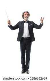 Senior male conductor on white background
