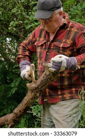 senior male cutting back tree log with axe