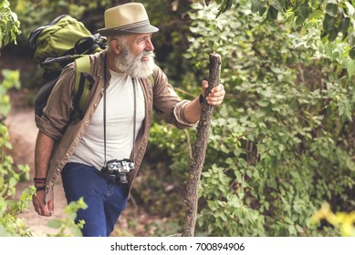 Senior male hiker walking with backpack in the wood