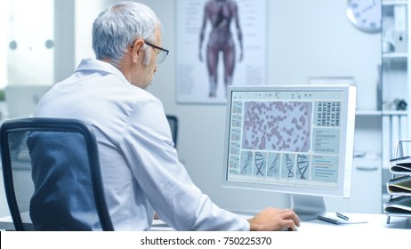 Senior Male Laboratory Researcher Working with Bacterial Assays on His Personal Computer. His Assistant Works at His Desk in the Background.