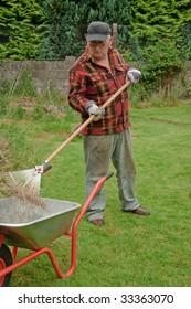 senior male raking grass and tidy up in garden