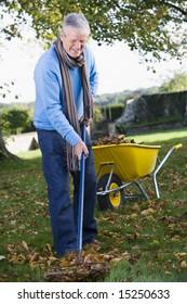 Senior man collecting autumn leaves in garden