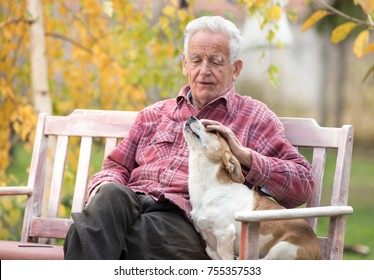 Senior man cuddling cute dog on bench in park with yellow tree in background in autumn. Pet love and care concept. Dog connection to people. Alternative therapy