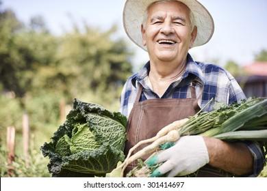 Senior man holding raw veggies